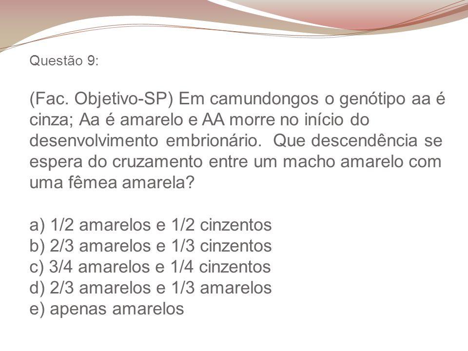 Questão 9: (Fac. Objetivo-SP) Em camundongos o genótipo aa é cinza; Aa é amarelo e AA morre no início do desenvolvimento embrionário. Que descendência