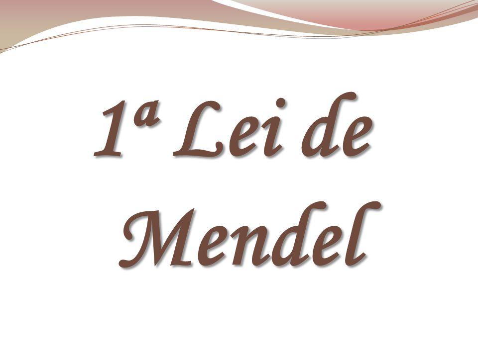 1ª Lei de Mendel