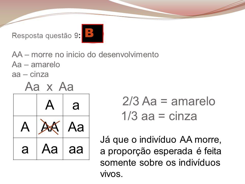 Resposta questão 9: D AA – morre no inicio do desenvolvimento Aa – amarelo aa – cinza Aa x Aa 2/3 Aa = amarelo 1/3 aa = cinza Aa AAAAa a aa Já que o i