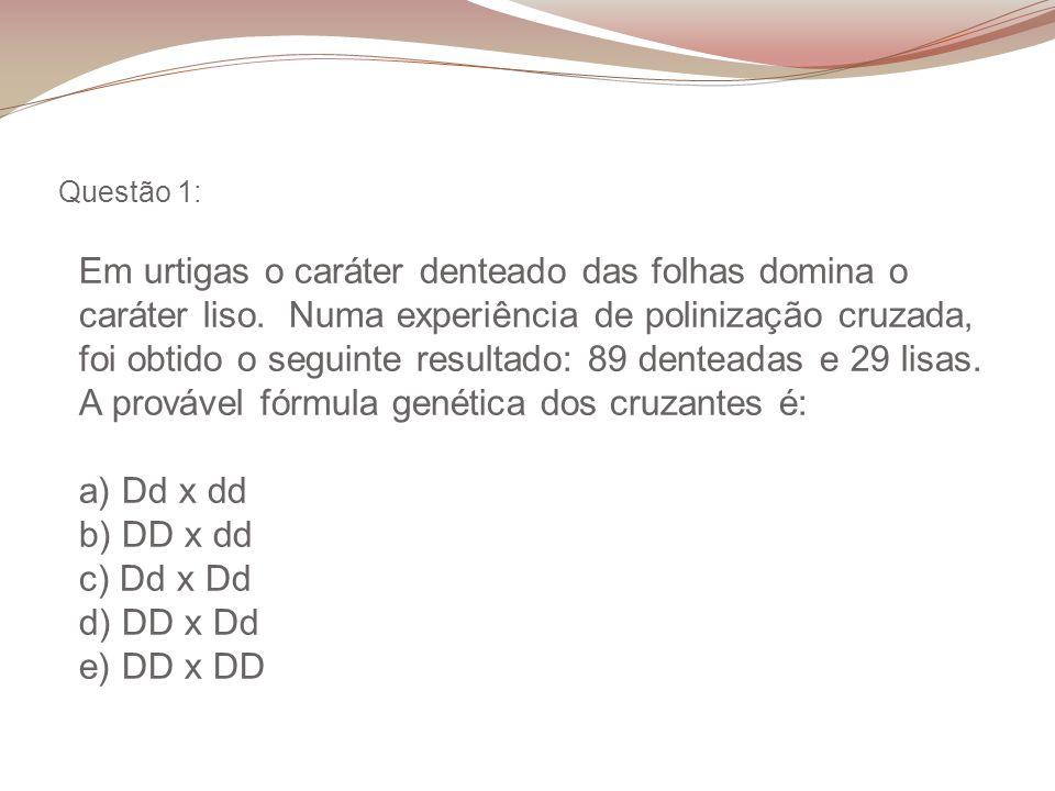 Resposta questão 21: E Escura – CC ou Cc Clara – cc No total nasceram 36 coelhos, 27 (3/4 do total) de pelo escuro e 9 (1/4 do total) de pelo claro.