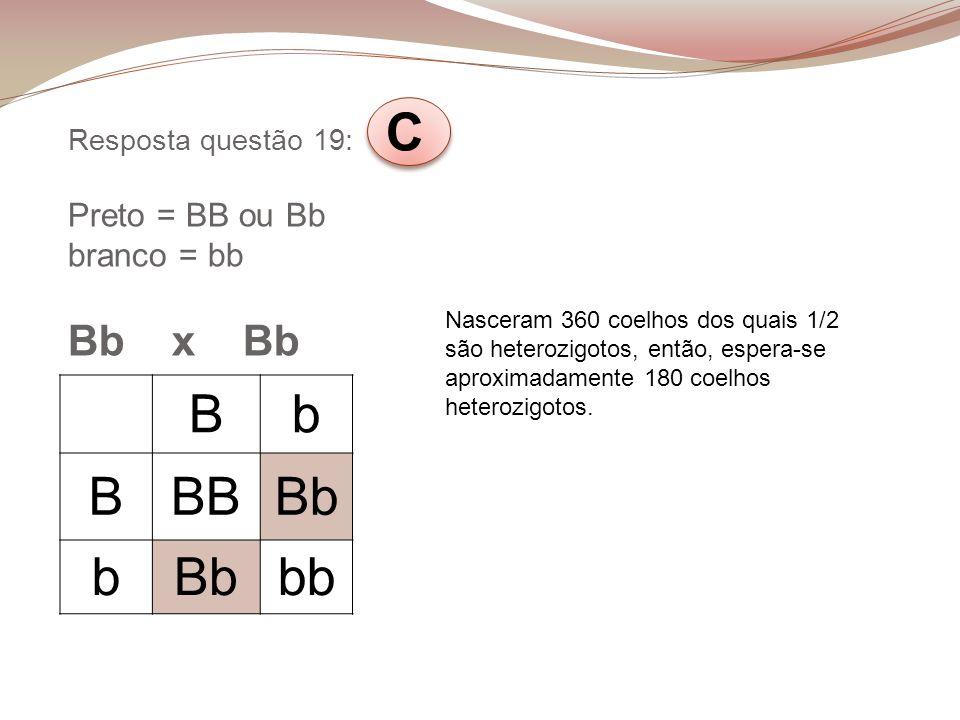 Resposta questão 19: C Preto = BB ou Bb branco = bb Bb x Bb Bb BBBBb b bb Nasceram 360 coelhos dos quais 1/2 são heterozigotos, então, espera-se aprox