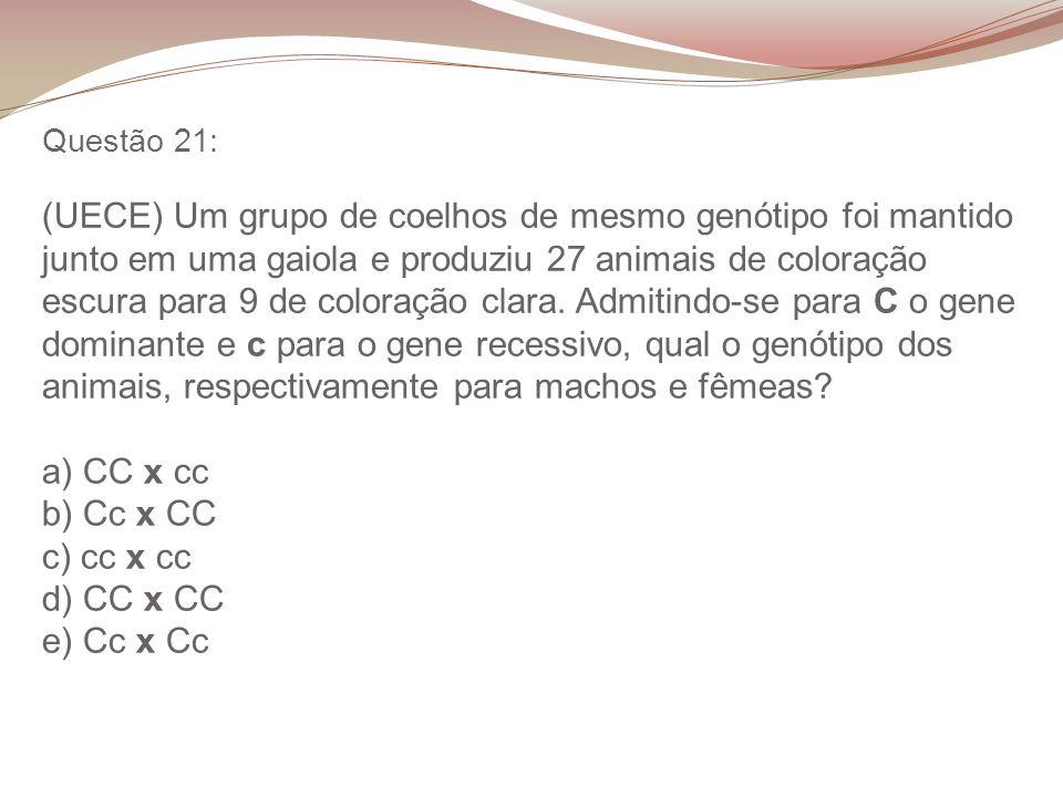 Questão 21: (UECE) Um grupo de coelhos de mesmo genótipo foi mantido junto em uma gaiola e produziu 27 animais de coloração escura para 9 de coloração