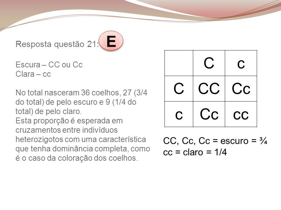 Resposta questão 21: E Escura – CC ou Cc Clara – cc No total nasceram 36 coelhos, 27 (3/4 do total) de pelo escuro e 9 (1/4 do total) de pelo claro. E