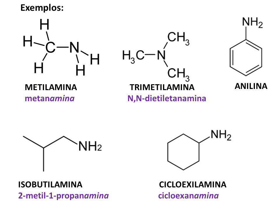 METILAMINA TRIMETILAMINA metanamina N,N-dietiletanamina ISOBUTILAMINA CICLOEXILAMINA 2-metil-1-propanaminacicloexanamina ANILINA Exemplos: