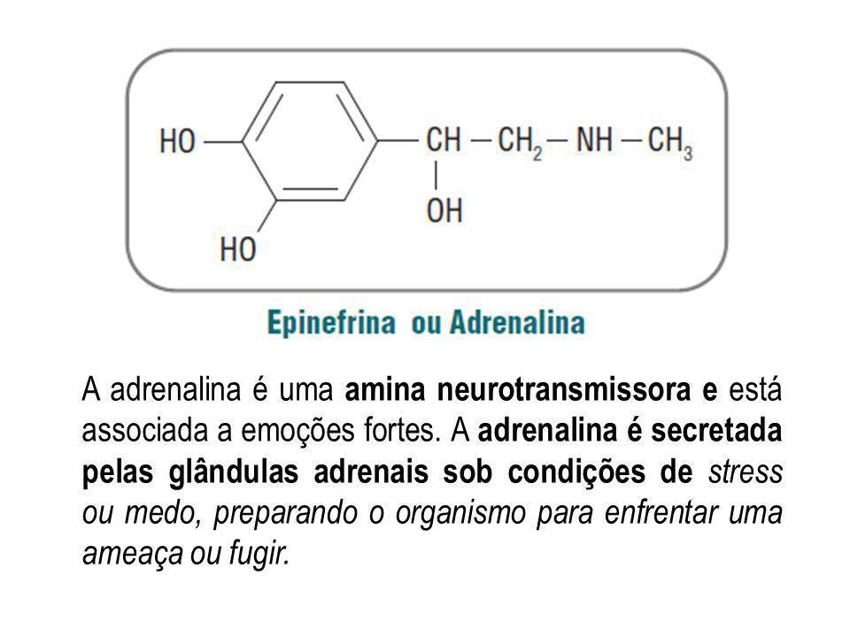 A adrenalina é uma amina neurotransmissora e está associada a emoções fortes. A adrenalina é secretada pelas glândulas adrenais sob condições de stres