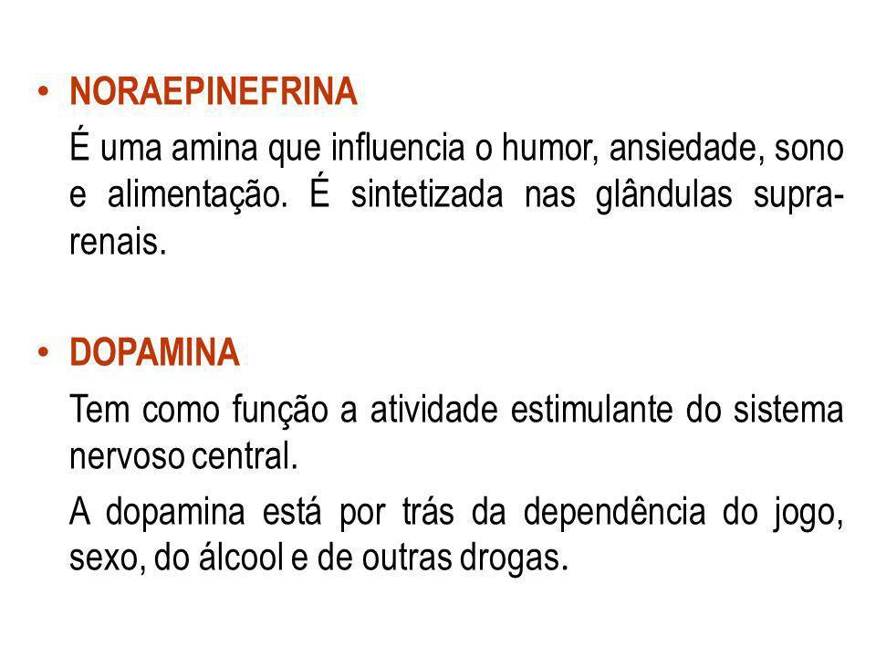NORAEPINEFRINA É uma amina que influencia o humor, ansiedade, sono e alimentação. É sintetizada nas glândulas supra- renais. DOPAMINA Tem como função