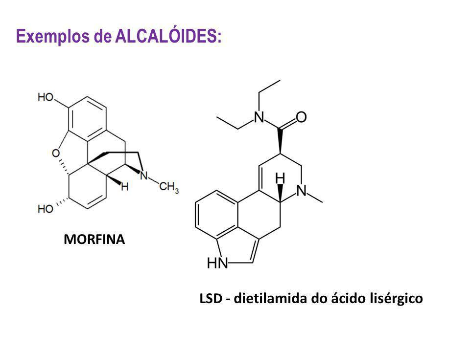 Exemplos de ALCALÓIDES: MORFINA LSD - dietilamida do ácido lisérgico