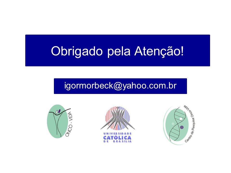 Obrigado pela Atenção! igormorbeck@yahoo.com.br