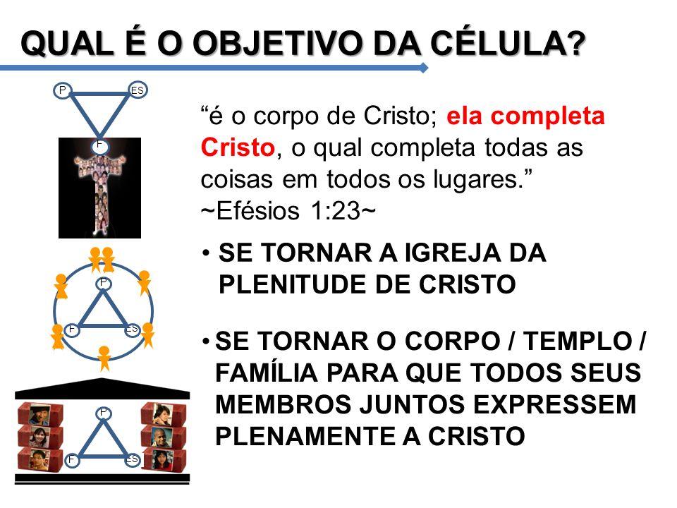 é o corpo de Cristo; ela completa Cristo, o qual completa todas as coisas em todos os lugares. ~Efésios 1:23~ QUAL É O OBJETIVO DA CÉLULA? SE TORNAR A