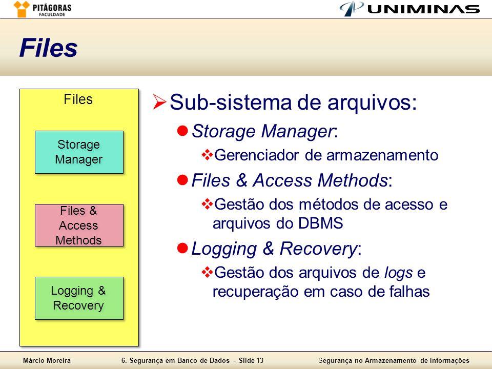 Márcio Moreira6. Segurança em Banco de Dados – Slide 13Segurança no Armazenamento de Informações Files Sub-sistema de arquivos: Storage Manager: Geren
