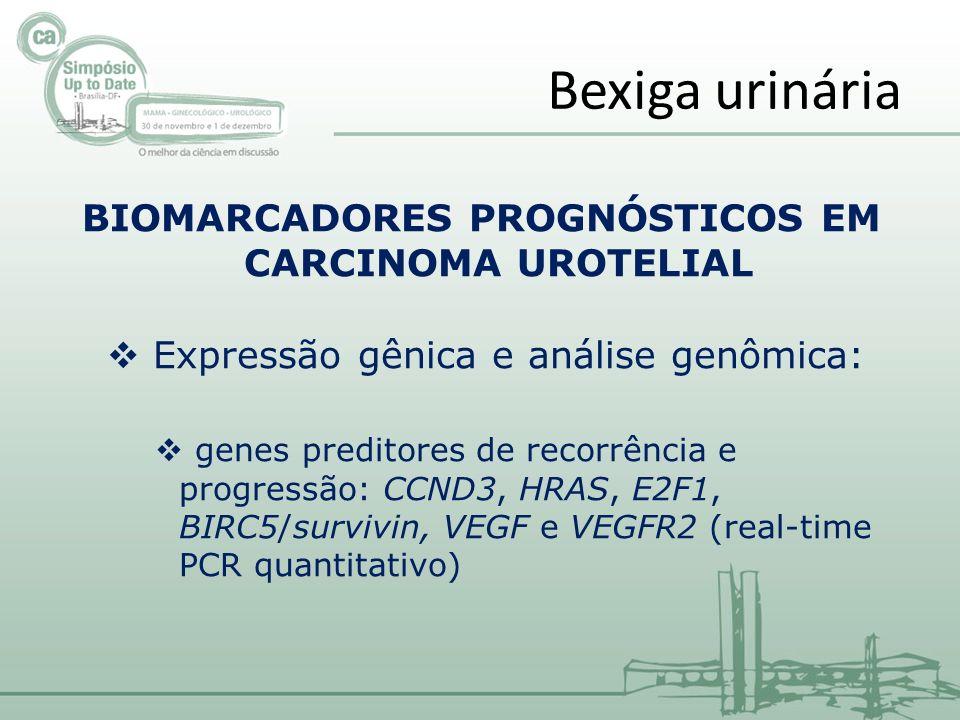 BIOMARCADORES PROGNÓSTICOS EM CARCINOMA UROTELIAL Expressão gênica e análise genômica: genes preditores de recorrência e progressão: CCND3, HRAS, E2F1, BIRC5/survivin, VEGF e VEGFR2 (real-time PCR quantitativo) Bexiga urinária
