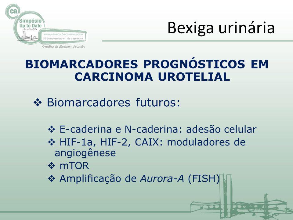 BIOMARCADORES PROGNÓSTICOS EM CARCINOMA UROTELIAL Biomarcadores futuros: E-caderina e N-caderina: adesão celular HIF-1a, HIF-2, CAIX: moduladores de a