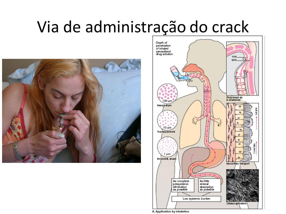 Via de administração do crack