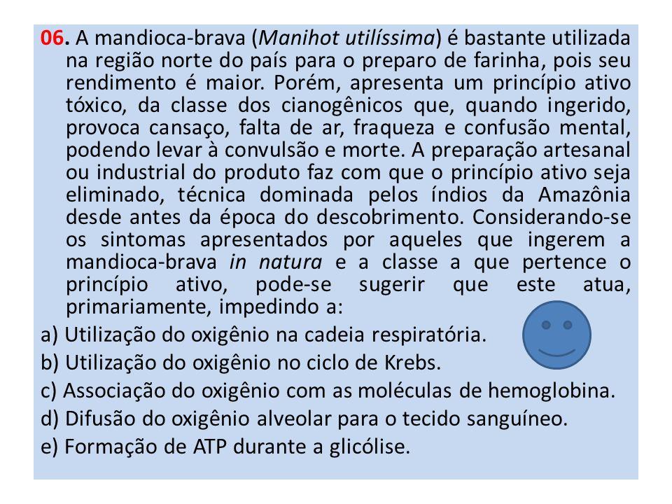 06. A mandioca-brava (Manihot utilíssima) é bastante utilizada na região norte do país para o preparo de farinha, pois seu rendimento é maior. Porém,
