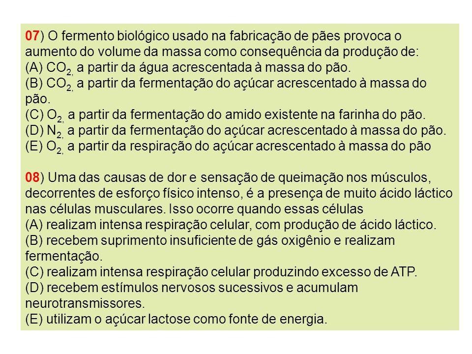 07) O fermento biológico usado na fabricação de pães provoca o aumento do volume da massa como consequência da produção de: (A) CO 2, a partir da água