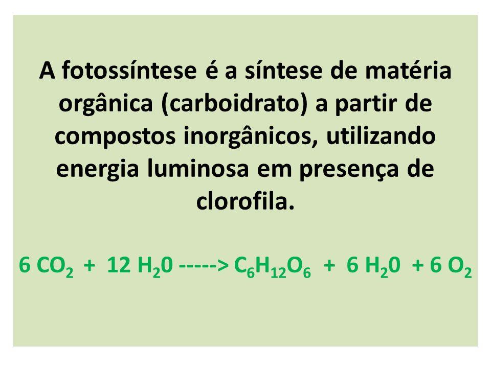 A fotossíntese é a síntese de matéria orgânica (carboidrato) a partir de compostos inorgânicos, utilizando energia luminosa em presença de clorofila.