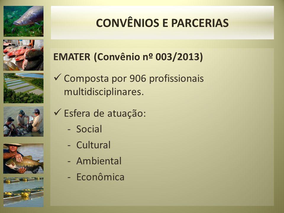 EMATER (Convênio nº 003/2013) Composta por 906 profissionais multidisciplinares. Esfera de atuação: -Social -Cultural -Ambiental -Econômica CONVÊNIOS