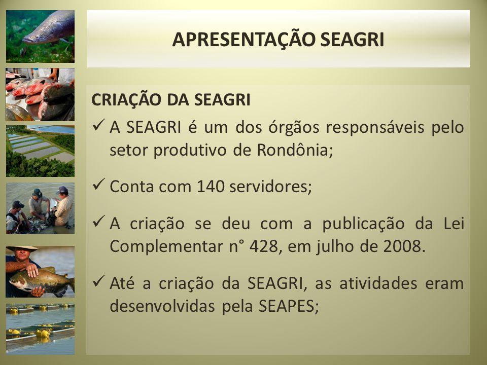 CRIAÇÃO DA SEAGRI A SEAGRI é um dos órgãos responsáveis pelo setor produtivo de Rondônia; Conta com 140 servidores; A criação se deu com a publicação da Lei Complementar n° 428, em julho de 2008.