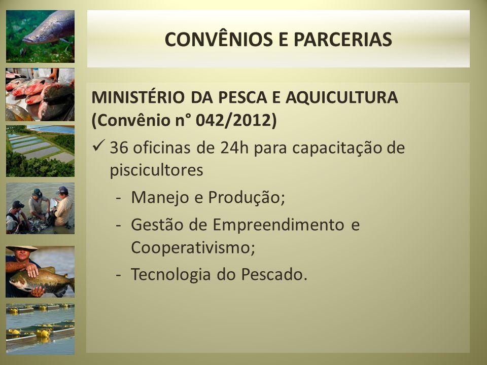 MINISTÉRIO DA PESCA E AQUICULTURA (Convênio n° 042/2012) 36 oficinas de 24h para capacitação de piscicultores -Manejo e Produção; -Gestão de Empreendimento e Cooperativismo; -Tecnologia do Pescado.
