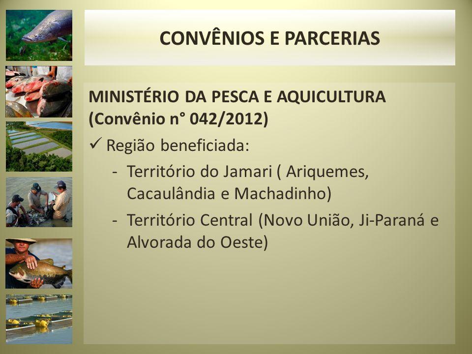 MINISTÉRIO DA PESCA E AQUICULTURA (Convênio n° 042/2012) Região beneficiada: -Território do Jamari ( Ariquemes, Cacaulândia e Machadinho) -Território Central (Novo União, Ji-Paraná e Alvorada do Oeste) CONVÊNIOS E PARCERIAS