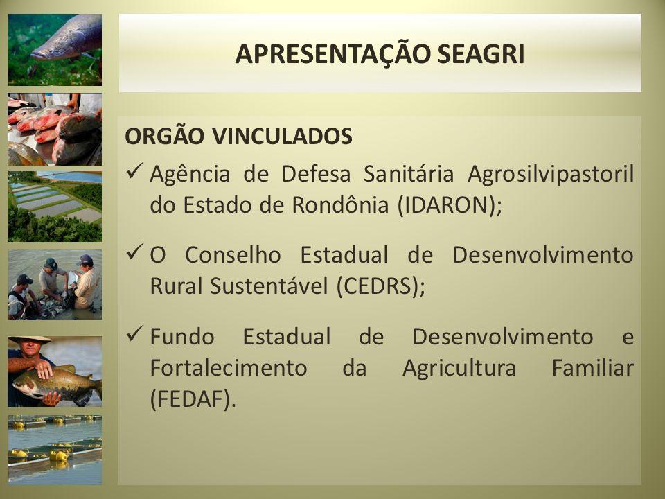 ORGÃO VINCULADOS Agência de Defesa Sanitária Agrosilvipastoril do Estado de Rondônia (IDARON); O Conselho Estadual de Desenvolvimento Rural Sustentáve