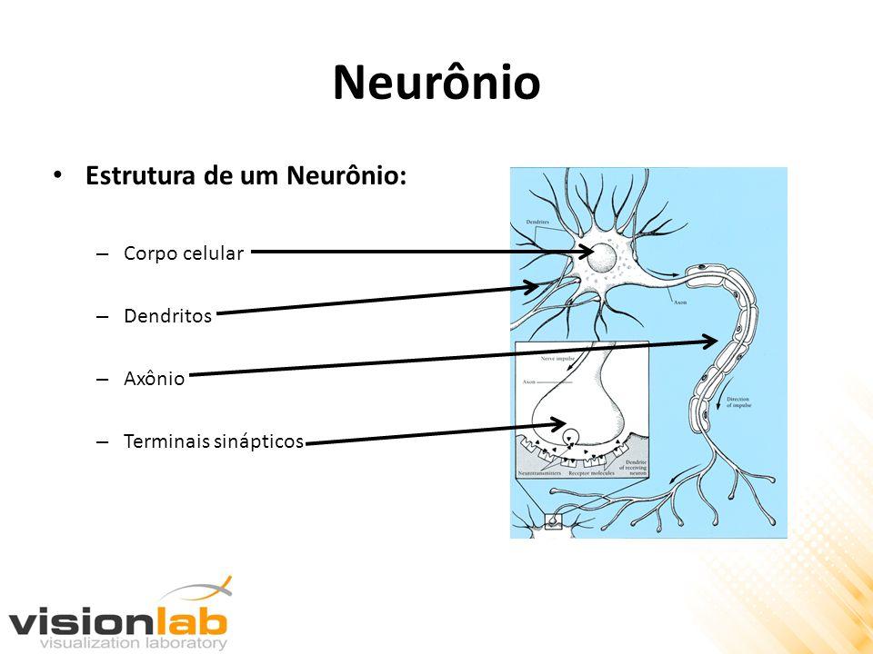 Funcionamento de um Neurônio Através dos dentritos, o neurônio recebe sinais de outros neurônios a ele conectados por meio das sinapses.