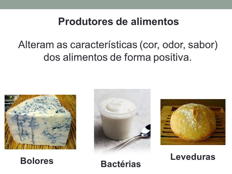 Alteram as características (cor, odor, sabor) dos alimentos de forma positiva. Produtores de alimentos Leveduras Bolores Bactérias