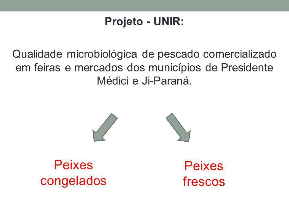 Projeto - UNIR: Qualidade microbiológica de pescado comercializado em feiras e mercados dos municípios de Presidente Médici e Ji-Paraná. Peixes congel