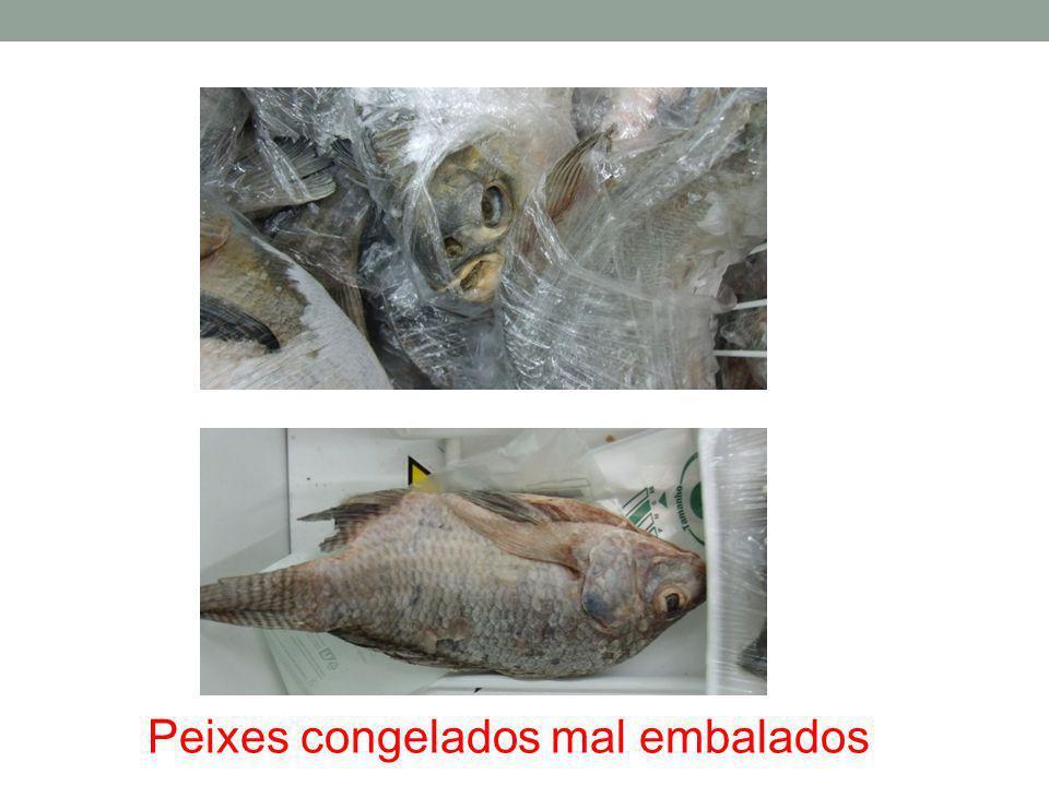 Peixes congelados mal embalados