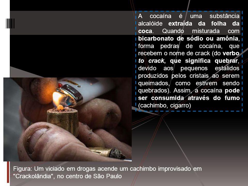 Figura: Um viciado em drogas acende um cachimbo improvisado em Crackolândia , no centro de São Paulo A cocaína é uma substância alcalóide extraída da folha da coca.