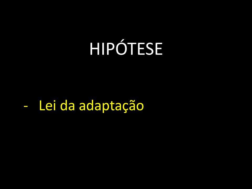 HIPÓTESE - Lei da adaptação