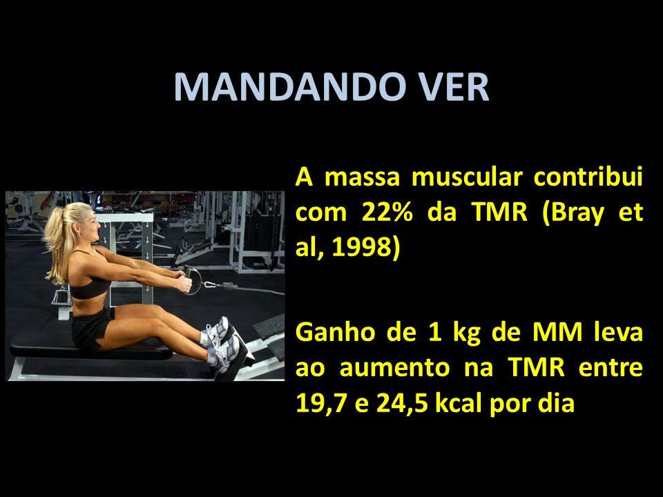 MANDANDO VER A massa muscular contribui com 22% da TMR (Bray et al, 1998) Ganho de 1 kg de MM leva ao aumento na TMR entre 19,7 e 24,5 kcal por dia
