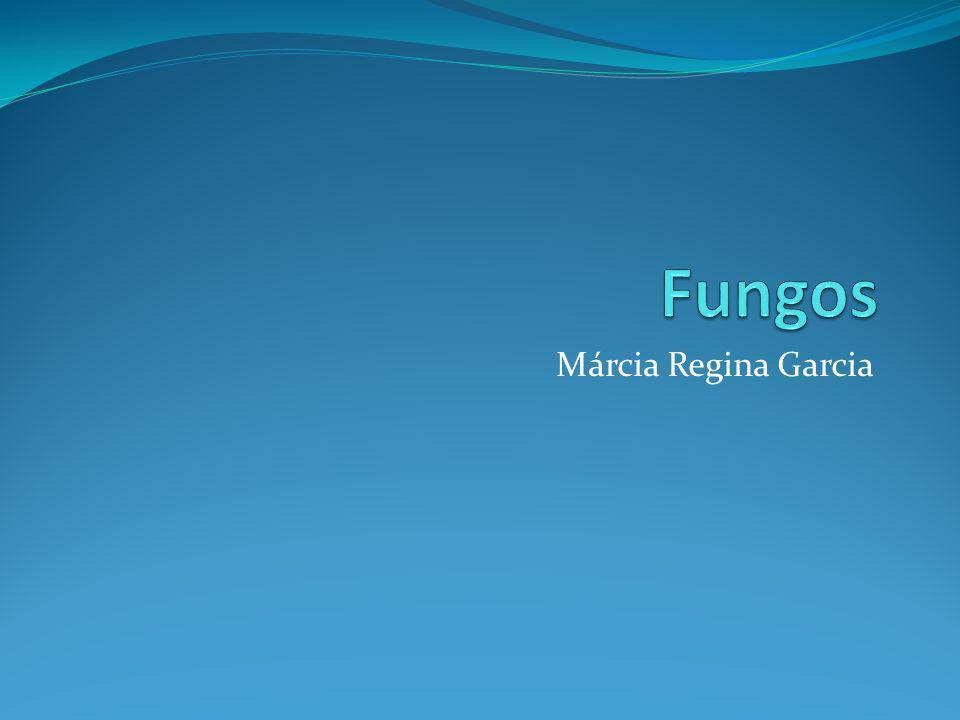 Márcia Regina Garcia