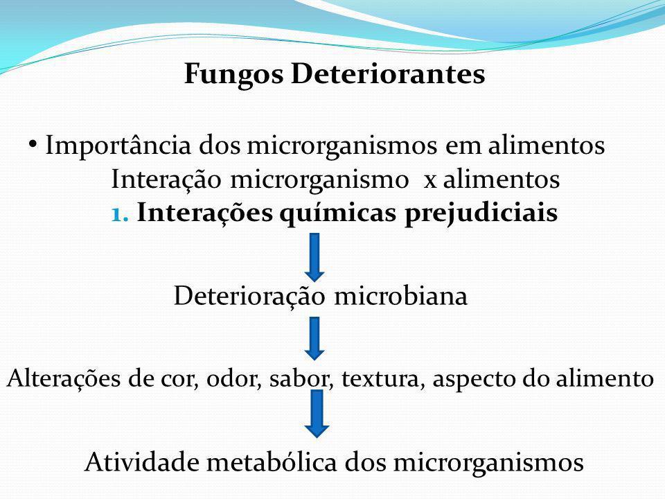 Fungos Deteriorantes Importância dos microrganismos em alimentos Interação microrganismo x alimentos 1.