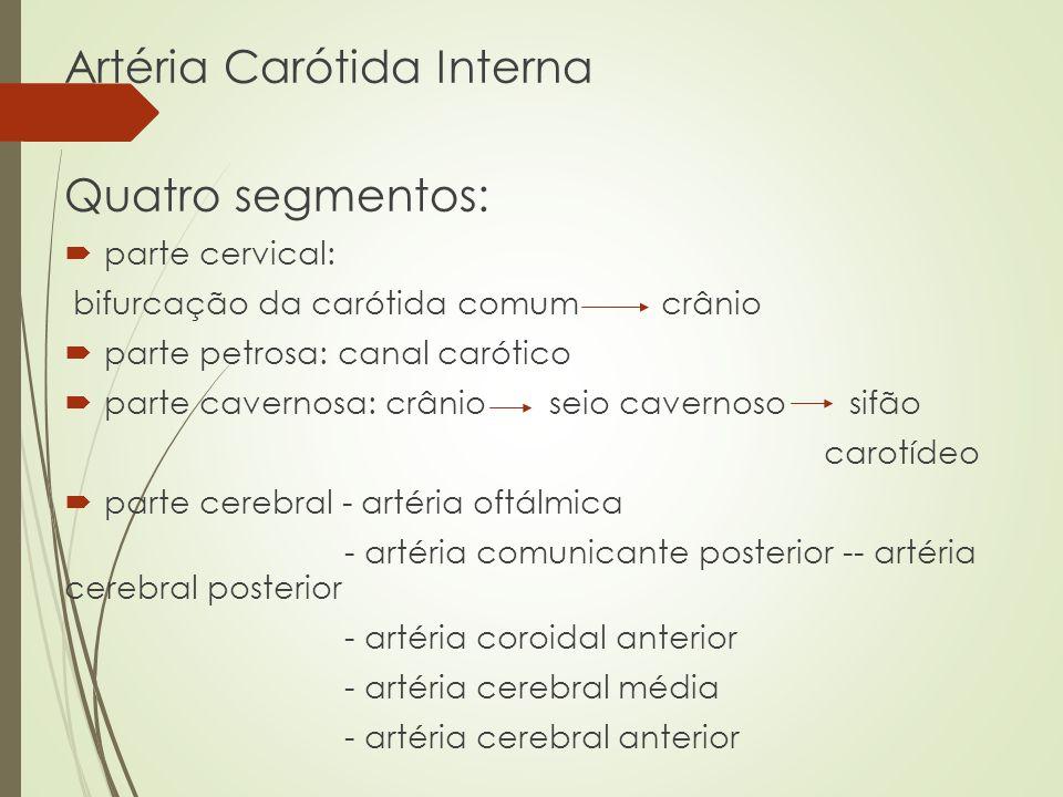 Artéria Carótida Interna Quatro segmentos: parte cervical: bifurcação da carótida comum crânio parte petrosa: canal carótico parte cavernosa: crânio s