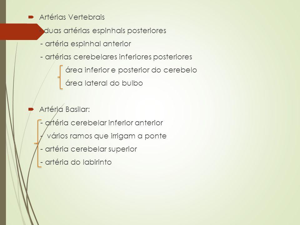 Artérias Vertebrais - duas artérias espinhais posteriores - artéria espinhal anterior - artérias cerebelares inferiores posteriores área inferior e po