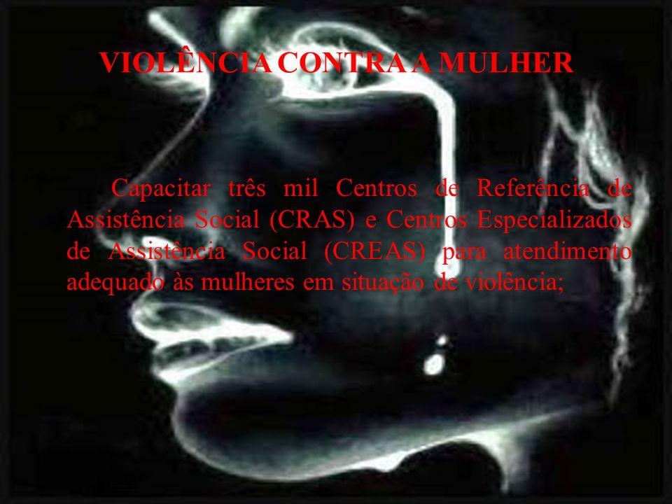 VIOLÊNCIA CONTRA A MULHER Capacitar três mil Centros de Referência de Assistência Social (CRAS) e Centros Especializados de Assistência Social (CREAS) para atendimento adequado às mulheres em situação de violência;