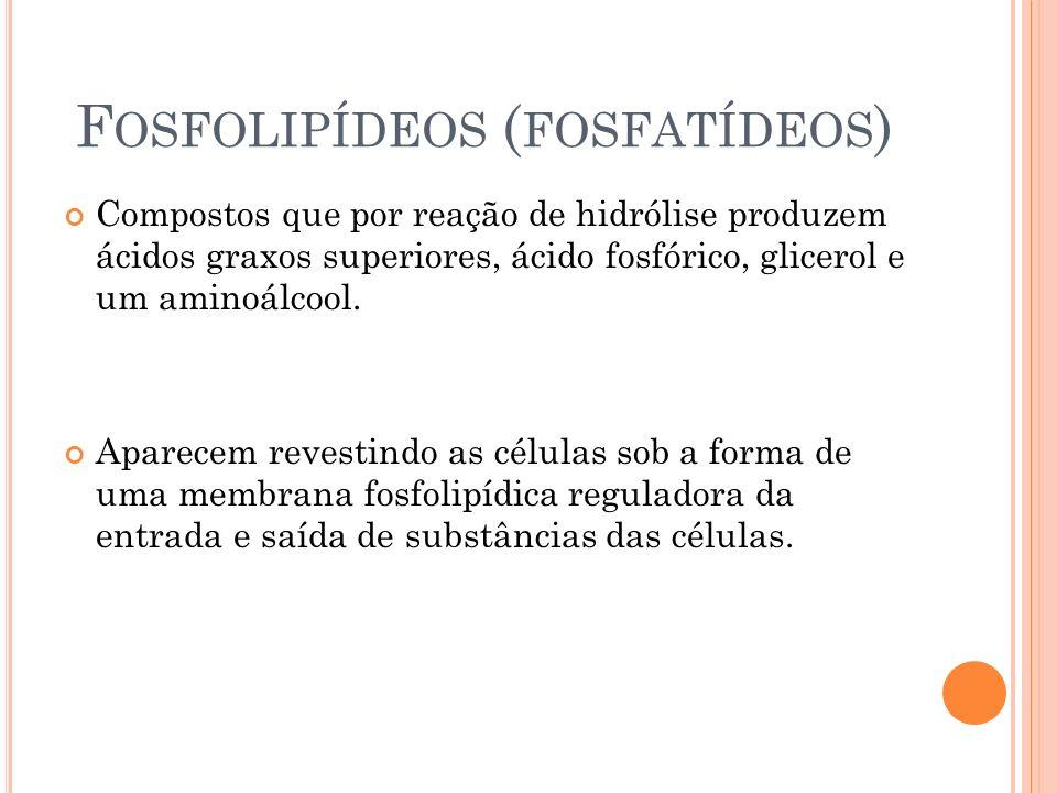 F OSFOLIPÍDEOS ( FOSFATÍDEOS ) Compostos que por reação de hidrólise produzem ácidos graxos superiores, ácido fosfórico, glicerol e um aminoálcool. Ap