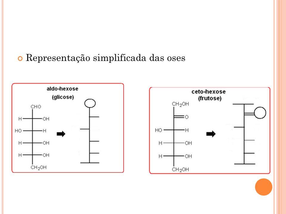 Representação simplificada das oses
