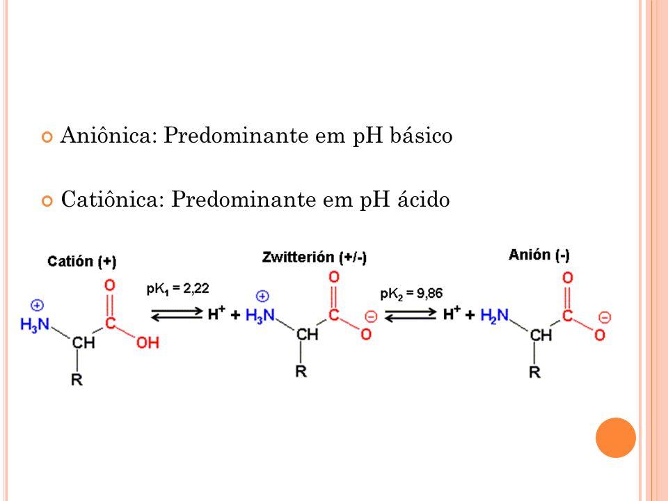 Aniônica: Predominante em pH básico Catiônica: Predominante em pH ácido