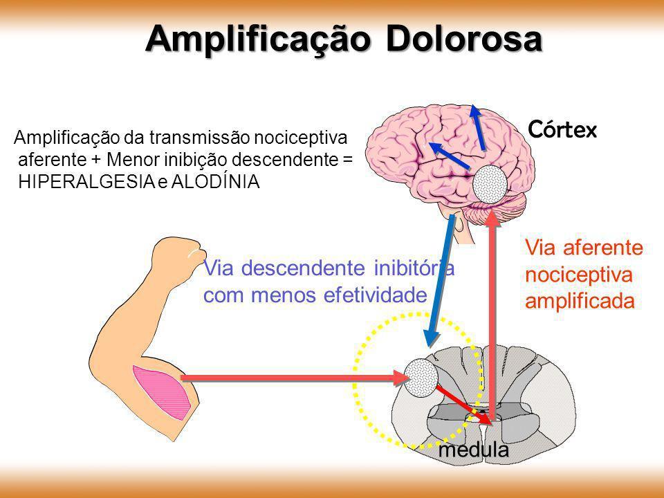 medula Córtex Via aferente nociceptiva amplificada Via descendente inibitória com menos efetividade Amplificação Dolorosa Amplificação da transmissão