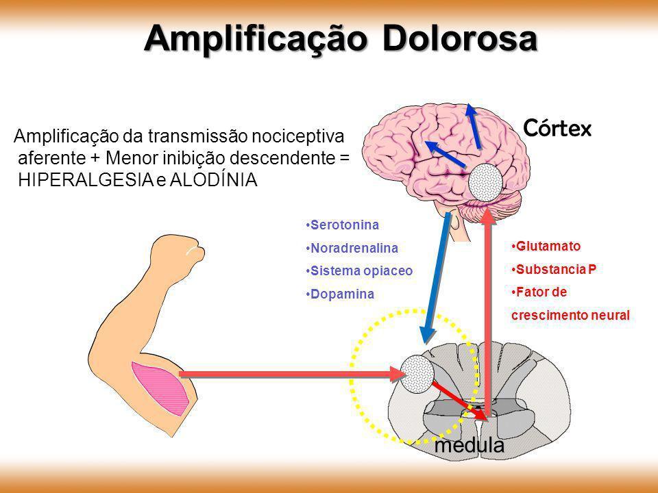 medula Córtex Serotonina Noradrenalina Sistema opiaceo Dopamina Amplificação da transmissão nociceptiva aferente + Menor inibição descendente = HIPERA