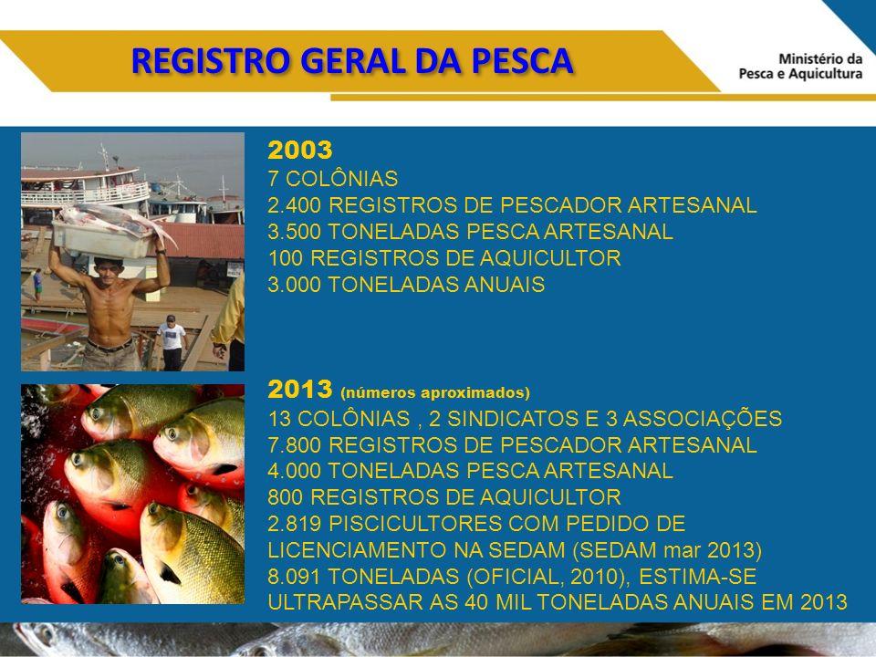 REGISTRO GERAL DA PESCA 2003 7 COLÔNIAS 2.400 REGISTROS DE PESCADOR ARTESANAL 3.500 TONELADAS PESCA ARTESANAL 100 REGISTROS DE AQUICULTOR 3.000 TONELADAS ANUAIS 2013 (números aproximados) 13 COLÔNIAS, 2 SINDICATOS E 3 ASSOCIAÇÕES 7.800 REGISTROS DE PESCADOR ARTESANAL 4.000 TONELADAS PESCA ARTESANAL 800 REGISTROS DE AQUICULTOR 2.819 PISCICULTORES COM PEDIDO DE LICENCIAMENTO NA SEDAM (SEDAM mar 2013) 8.091 TONELADAS (OFICIAL, 2010), ESTIMA-SE ULTRAPASSAR AS 40 MIL TONELADAS ANUAIS EM 2013