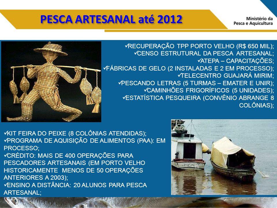 PESCA ARTESANAL até 2012 RECUPERAÇÃO TPP PORTO VELHO (R$ 650 MIL); CENSO ESTRUTURAL DA PESCA ARTESANAL; ATEPA – CAPACITAÇÕES; FÁBRICAS DE GELO (2 INSTALADAS E 2 EM PROCESSO); TELECENTRO GUAJARÁ MIRIM; PESCANDO LETRAS (5 TURMAS – EMATER E UNIR); CAMINHÕES FRIGORÍFICOS (5 UNIDADES); ESTATÍSTICA PESQUEIRA (CONVÊNIO ABRANGE 8 COLÔNIAS); KIT FEIRA DO PEIXE (8 COLÔNIAS ATENDIDAS); PROGRAMA DE AQUISIÇÃO DE ALIMENTOS (PAA): EM PROCESSO; CRÉDITO: MAIS DE 400 OPERAÇÕES PARA PESCADORES ARTESANAIS (EM PORTO VELHO HISTORICAMENTE MENOS DE 50 OPERAÇÕES ANTERIORES A 2003); ENSINO A DISTÂNCIA: 20 ALUNOS PARA PESCA ARTESANAL;