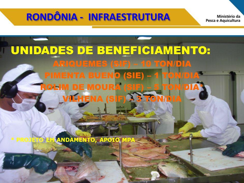 RONDÔNIA - INFRAESTRUTURA UNIDADES DE BENEFICIAMENTO: ARIQUEMES (SIF) – 10 TON/DIA PIMENTA BUENO (SIE) – 1 TON/DIA ROLIM DE MOURA (SIF) – 5 TON/DIA* VILHENA (SIF) – 3 TON/DIA * PROJETO EM ANDAMENTO, APOIO MPA