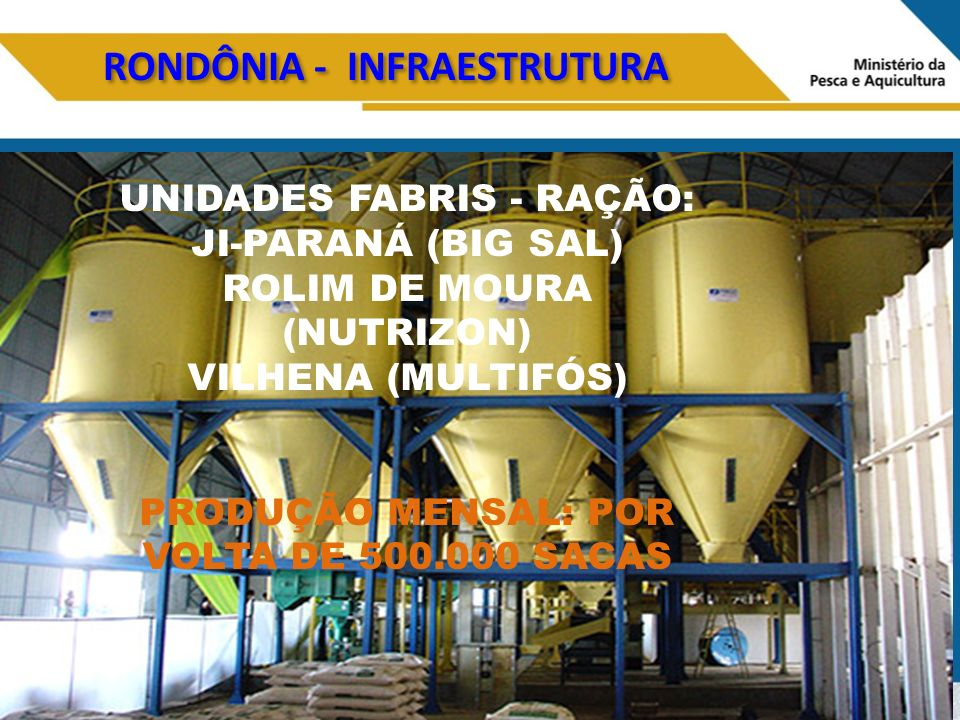 RONDÔNIA - INFRAESTRUTURA UNIDADES FABRIS - RAÇÃO: JI-PARANÁ (BIG SAL) ROLIM DE MOURA (NUTRIZON) VILHENA (MULTIFÓS) PRODUÇÃO MENSAL: POR VOLTA DE 500.000 SACAS
