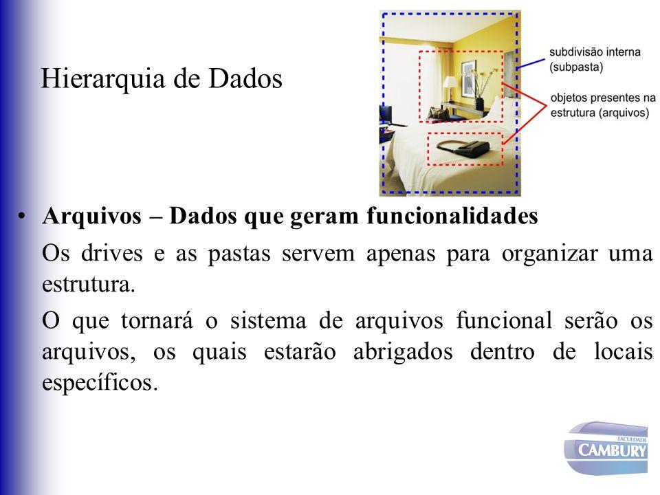 Hierarquia de Dados Arquivos – Dados que geram funcionalidades Os drives e as pastas servem apenas para organizar uma estrutura. O que tornará o siste