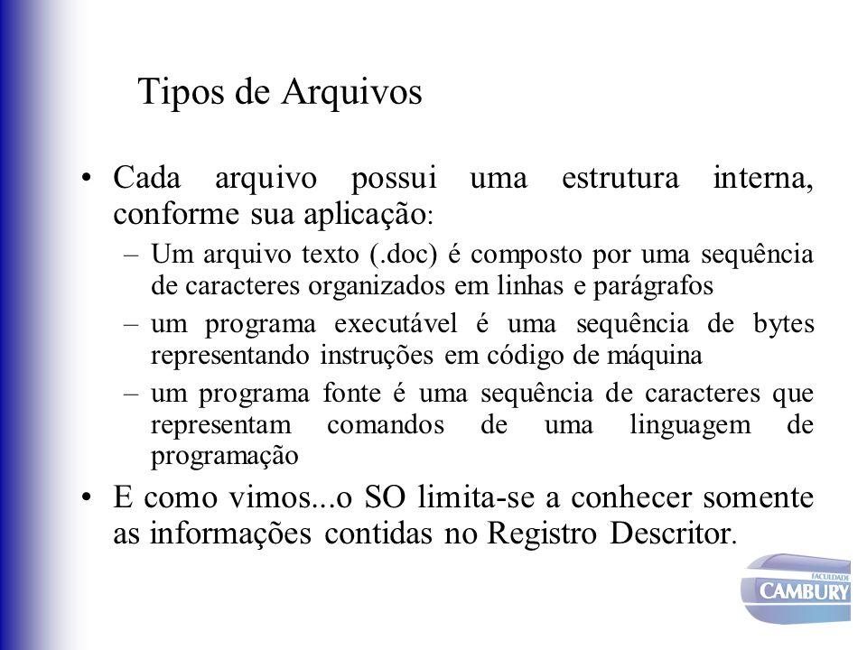 Tipos de Arquivos Cada arquivo possui uma estrutura interna, conforme sua aplicação : –Um arquivo texto (.doc) é composto por uma sequência de caracte