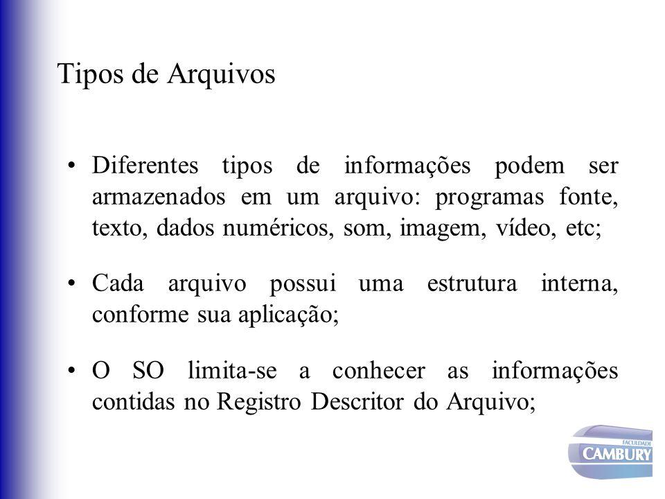 Tipos de Arquivos Diferentes tipos de informações podem ser armazenados em um arquivo: programas fonte, texto, dados numéricos, som, imagem, vídeo, et
