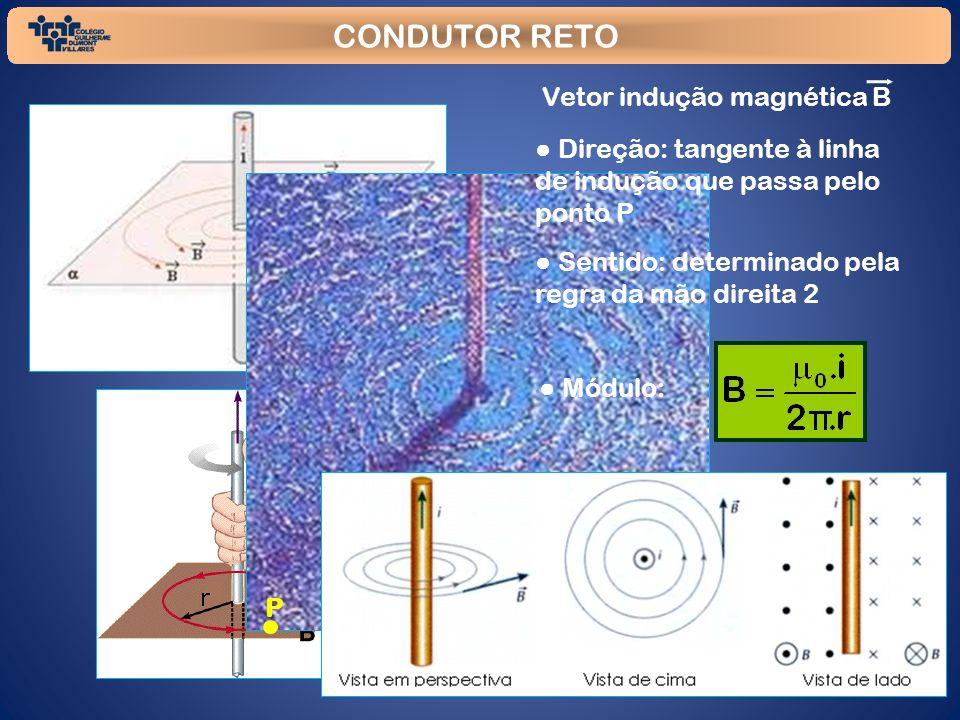 CONDUTOR RETO P Vetor indução magnética B Direção: tangente à linha de indução que passa pelo ponto P Sentido: determinado pela regra da mão direita 2